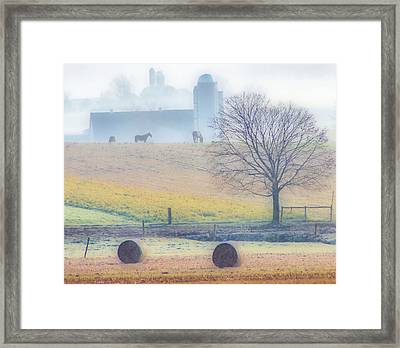 Foggy Morning Framed Print by Thomas  MacPherson Jr