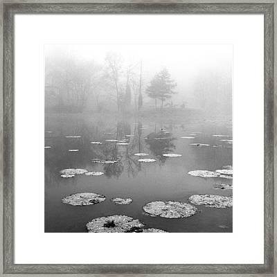 Foggy Morning Framed Print by Wendell Thompson