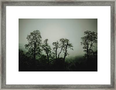 Framed Print featuring the photograph Foggy Mountain Morning At The Meadows Of Dan by John Haldane