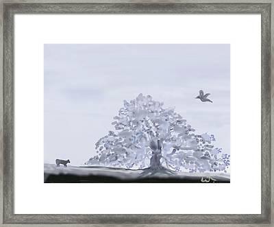 Foggy Oak Framed Print by Warren Thompson