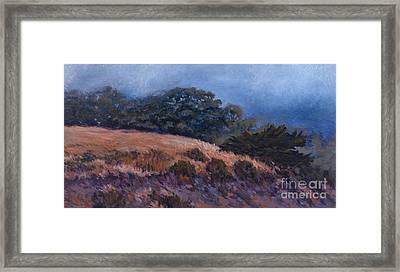 Foggy Oasis - Pch Framed Print by Betsee  Talavera