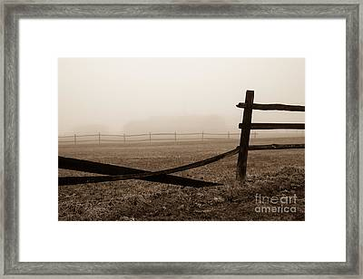 Foggy Pasture Framed Print