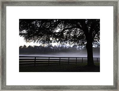 Foggy Pasture Framed Print by Kathy Ponce