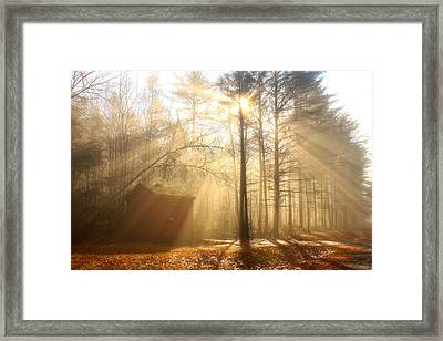 Foggy Rays And Forest Cabin Framed Print by John Burk