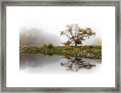 Foggy Reflections Landscape Framed Print by Debra and Dave Vanderlaan