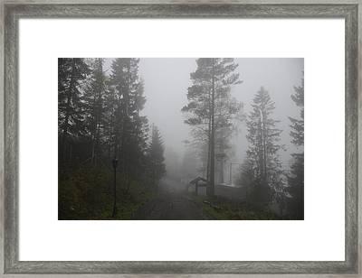Foggy Romance 1 Framed Print