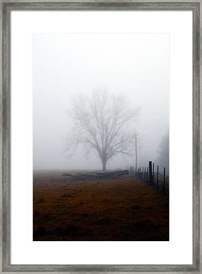 Foggy Sunday Framed Print by Leon Hollins III