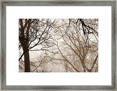 Foggy Winter Afternoon In Sepia Framed Print by Sarah Loft