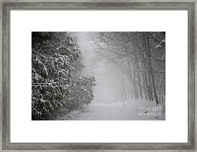 Foggy Winter Road Framed Print