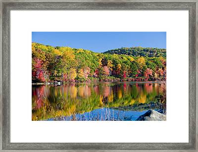 Foilage In The Fall Framed Print