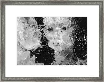 Foiled Again Framed Print