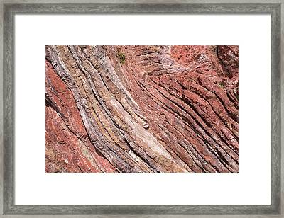 Folded Sandstone Framed Print by David Parker