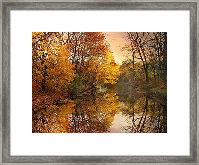 Framed Print featuring the photograph Foliage Reflected by Jessica Jenney