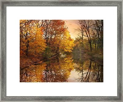 Foliage Reflected Framed Print by Jessica Jenney