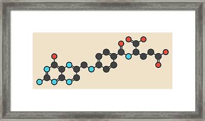 Folic Acid Molecule Framed Print by Molekuul