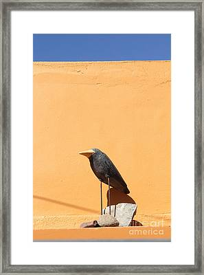 Folk Art Crow Todos Santos Framed Print by Linda Queally