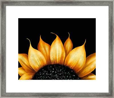 Folk Art Sunflower Framed Print by Brenda Bryant