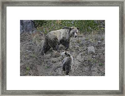 Framed Print featuring the photograph Follow Me by Gary Hall