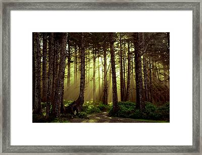 Follow Me Home Framed Print by Harmony Lawrence