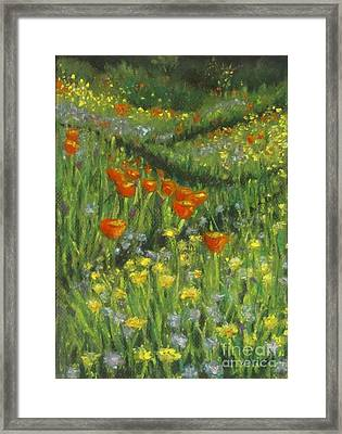 Poppy Trail Framed Print