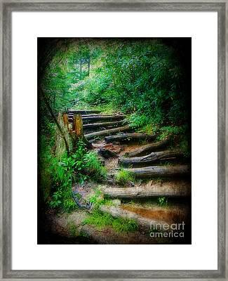 Follow Me To An Adventure Framed Print by Lorraine Heath