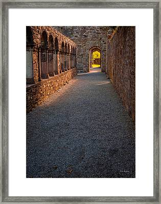 Follow Our Path Framed Print by Tim Bryan
