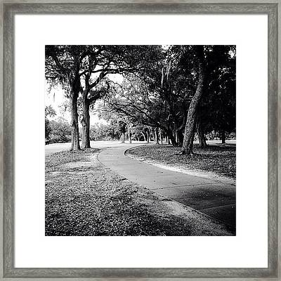 Follow Framed Print