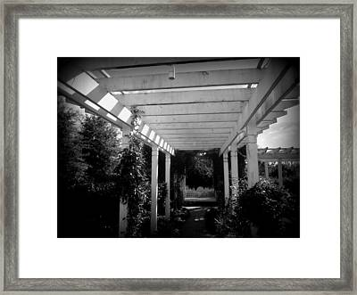 Follow The Arbor Framed Print by Peter LaPlaca