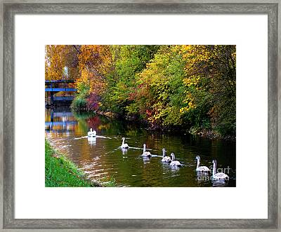 Framed Print featuring the photograph Follow The Leader by Charles Lupica