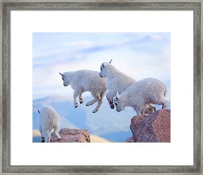 Follow The Leader Framed Print by Jim Garrison