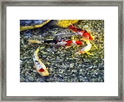 Follow The Leader Framed Print by Susan Savad