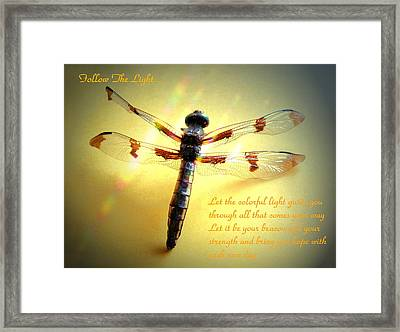 Follow The Light Framed Print by Joyce Dickens