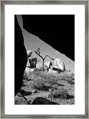 Follow The Lines Framed Print by Peter Tellone