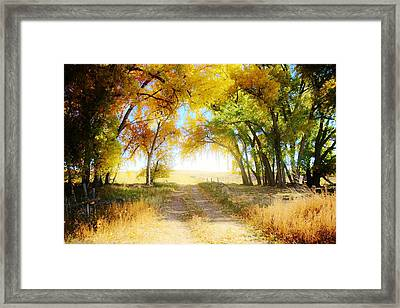 Framed Print featuring the photograph Follow Your Heart by Shirley Heier