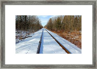 Follow Your Own Path Framed Print by Debbie Oppermann