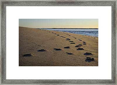 Follow Your Path Framed Print by Luke Moore
