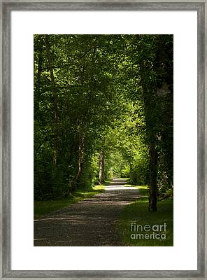 Follow Your Path Framed Print by Malu Couttolenc