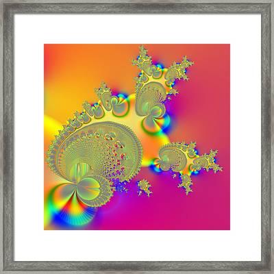 Follower Framed Print