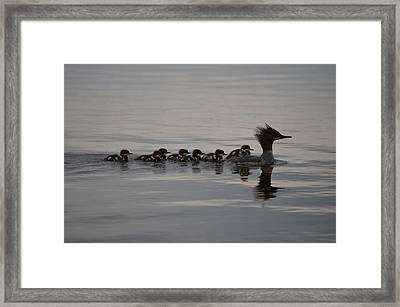 Following Mom Framed Print