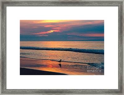 Following The Tide Framed Print by Debbie Bailey