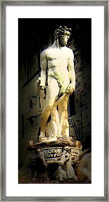 Fontana Del Nettuno Framed Print by Li   van Saathoff