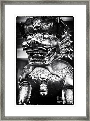 Foo Dog Framed Print by John Rizzuto