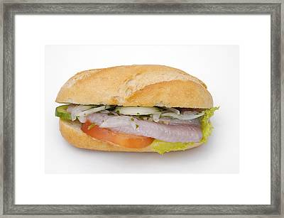 Food - Bread Roll With Fish Framed Print