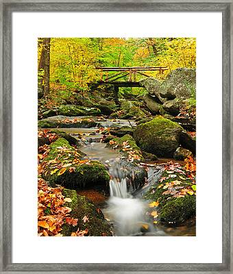 Foot Bridge- Macedonia Brook State Park Framed Print by Thomas Schoeller