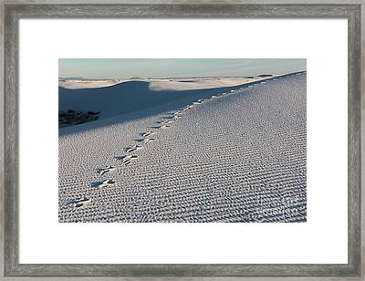 Foot Prints In The Sands Framed Print