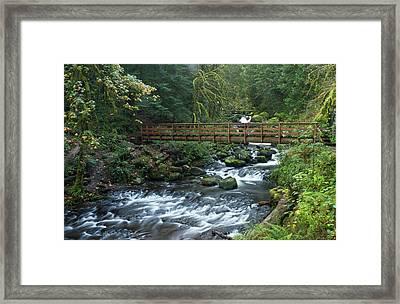 Footbridge Across Oneonta Creek Framed Print by William Sutton