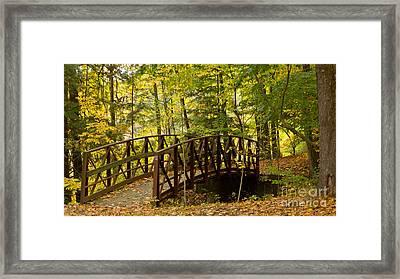 Footbridge At Letchworth Framed Print