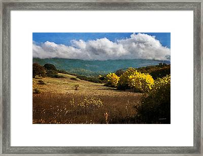 Foothill Autumn In Southern Oregon Framed Print by Mick Anderson