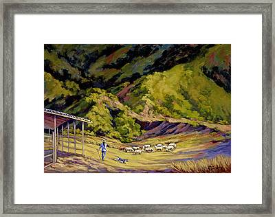 Foothill Sheepherder Framed Print by Jane Thorpe