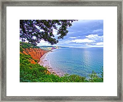 Footpath To Sidmouth Framed Print by Andrew Middleton